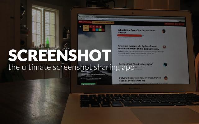 webpagescreenshot1