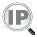 IP Address and Domain Information